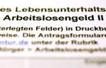 BERLIN - OCTOBER 20:  An application for unemp...
