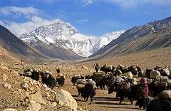 Rhongbuk Mount Everest or Jomo Langma