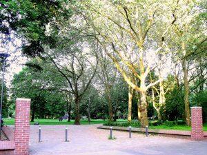 Böningerpark: Alter Baumbestand prägt den familienfreundlichen Böningerpark.