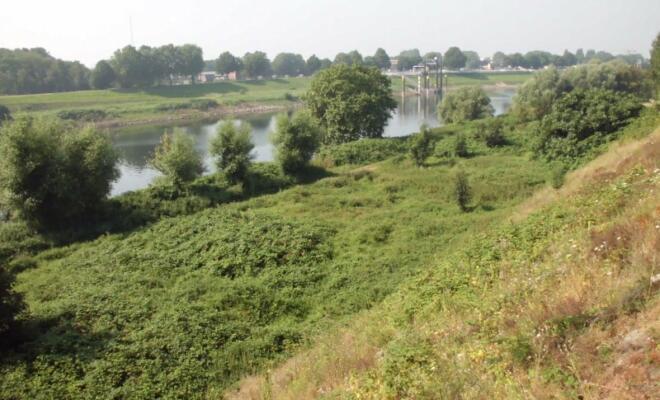 Die Ruhr von der Btuecke nach Ruhrort - (c) Reinhard Matern
