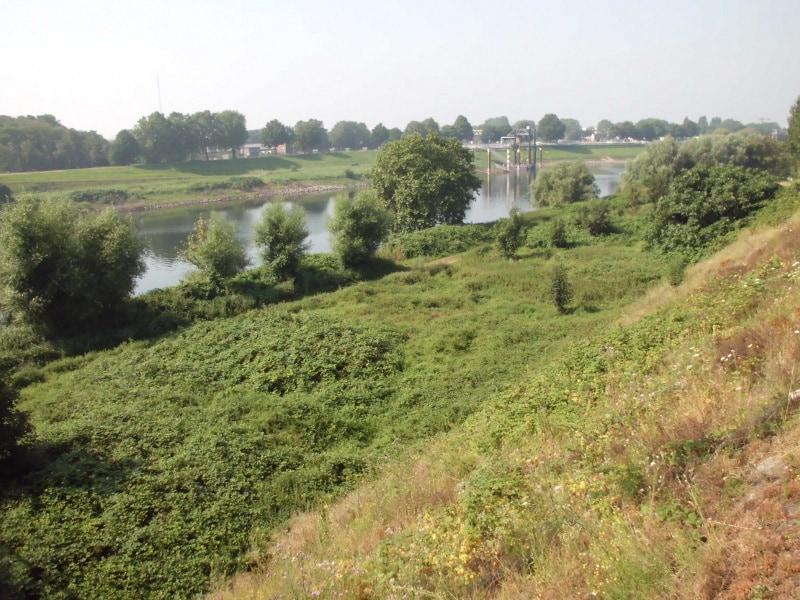 Die Ruhr von der Brücke nach Ruhrort - (c) Reinhard Matern