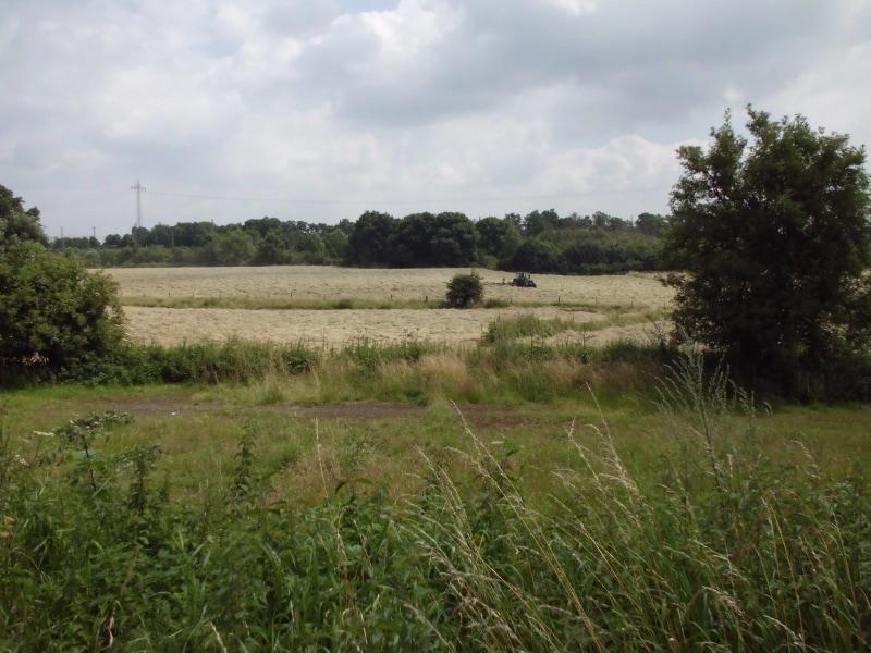 Bauernland 2 mit Traktor - (c) Reinhard Matern