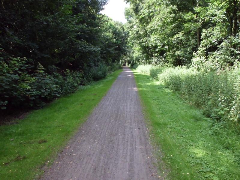 Fußgänger- und Fahrradweg parallel zum Rhein - (c) Reinhard Matern