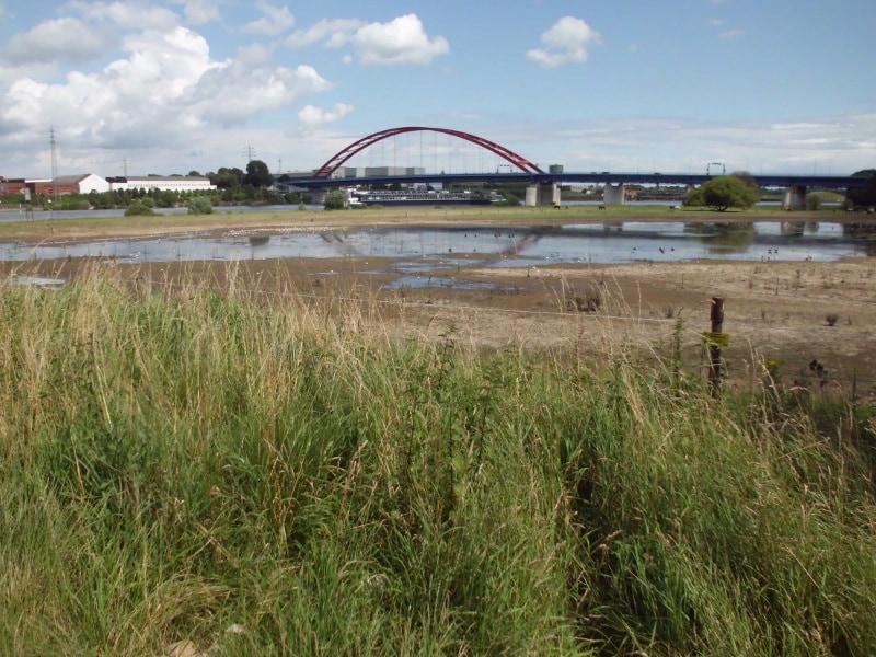 Brücke der Solidarität von unten - (c) Reinhard Matern