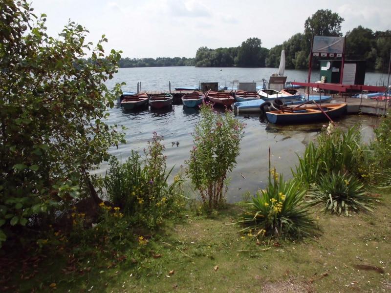 Ruderboote - (c) Reinhard Matern