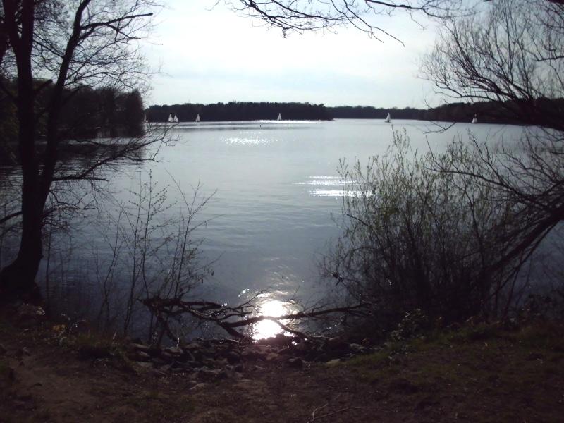 Uferblick am Nachmittag - (c) Reinhard Matern