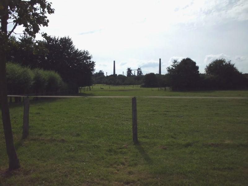 Blick am Nachmittag vom Lehrbauernhof auf den Park - (c) Reinhard Matern