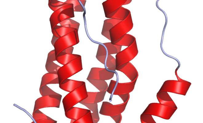 Von Ramin Herati - Created from PDB 1ALU and rendered by me using Pymol, Gemeinfrei, Link